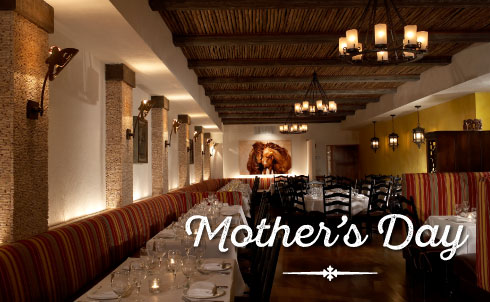 Mother's Day Best Restaurant, Mother's Day Long Island Restaurant, Mother's Day Huntington, Mother's Day Roslyn, Mother's Day NY, Mother's Day Boston, Mother's Day Burlington, Mother's Day Chestnut Hill, Mother's Day West Hartford, Mother's Day CT, Mother's Day MA, Best Restaurant West Hartford, Best Restaurant Burlington, Best Restaurant Chestnut Hill, Best Restaurant Long Island, Best Mexican Restaurant NY, Best Mexican Restaurant Boston